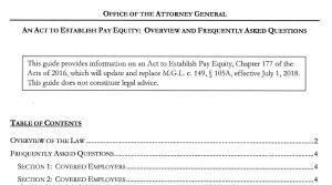 Screen Shot - Pay Equity Guidance